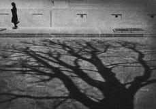 Máscara da árvore fora fotografia de stock