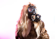 Máscara de gás Imagem de Stock Royalty Free