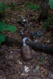Máscara de gás velha na floresta fotografia de stock royalty free
