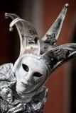 Máscara de plata Fotografía de archivo