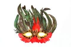 Máscara de un pájaro para los días de fiesta y los carnavales foto de archivo