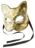 Máscara del carnaval Foto de archivo libre de regalías