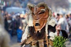 Máscara del carnaval de la máscara de Surva Kuker Imagen de archivo libre de regalías