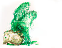 Máscara del carnaval de Venecia Imágenes de archivo libres de regalías