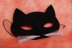 Máscara del gato Imágenes de archivo libres de regalías