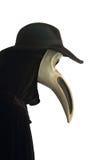 Máscara del pájaro del carnaval Imagen de archivo libre de regalías