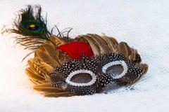 Máscara do carnaval com penas em um fundo branco do laço fotografia de stock