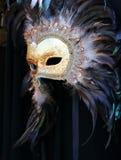 Máscara do carnaval, Veneza Foto de Stock