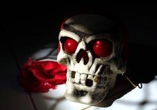 Máscara do crânio fotografia de stock