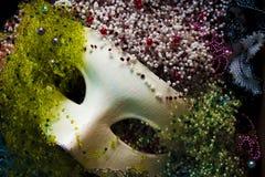Máscara e grânulos Foto de Stock
