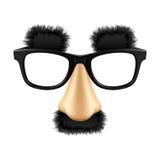 Máscara engraçada do disfarce. Vetor. Imagem de Stock