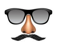 Máscara engraçada feita dos vidros, do bigode e do nariz ilustração stock