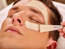 Máscara facial da lama da mulher no salão de beleza dos termas Massagem de cara fotos de stock