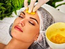 Máscara facial dos frutos para a mulher Menina no chapéu médico imagens de stock