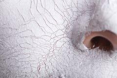 Máscara facial Spa Fotos de archivo