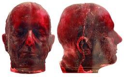 Máscara humana Imagem de Stock