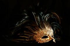 Máscara lujosa Fotografía de archivo libre de regalías