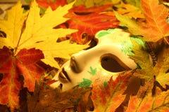 Máscara nas folhas de plátano Fotografia de Stock