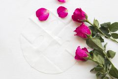 Máscara natural da folha para a cara da pele das flores ervais Imagem de Stock Royalty Free