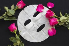 Máscara natural de la hoja para la cara de la piel de las flores herbarias Foto de archivo libre de regalías
