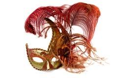 Máscara veneciana de Ñarnival Imagen de archivo