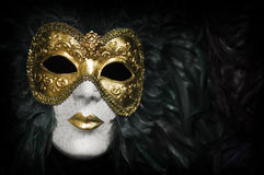 Máscara Venetian do carnaval imagem de stock royalty free
