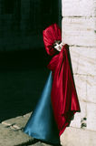 Máscara Venetian do carnaval Fotografia de Stock