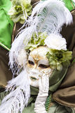Máscara Venetian do carnaval - senhora Nature Foto de Stock