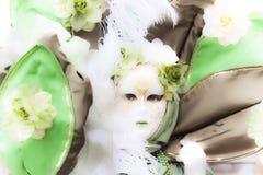 Máscara Venetian do carnaval - senhora Nature Fotografia de Stock