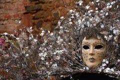 Máscara Venetian do carnaval tradicional Imagens de Stock