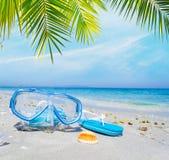 Máscara y chancletas que se zambullen debajo de una palmera Imagen de archivo libre de regalías