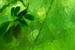 Máscaras borradas de cores verdes Formas abstratas de cores esverdeados Um ramo é translúcido atrás do vidro fotografia de stock