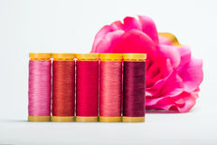 Máscaras da cor-de-rosa Imagem de Stock Royalty Free