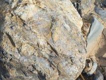 Máscaras diferentes de superfície de pedra, textura Imagem de Stock