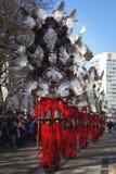 Máscaras rojas Surva de las plumas de las máscaras Fotos de archivo