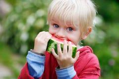 Mâcher de melon image stock