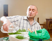Mâle adulte s'inquiétant des jeunes plantes dans des pots Photo libre de droits