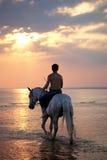 Mâle conduisant un cheval sur le fond de la mer Images stock