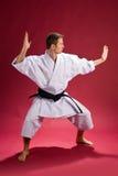 Mâle dans le kimono de karaté photos libres de droits