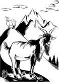 Mâle de chèvre été perché sur une roche illustration libre de droits
