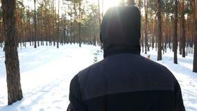 Mâle de forêt d'hiver banque de vidéos