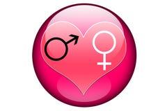 Mâle et femelle dans un corps rond vitreux rose Image stock