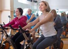 Mâles et femelles mûrs sur des vélos d'exercice dans le gymnase Photo stock