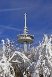Mât par radio en hiver Image libre de droits