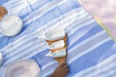 Mädchen mit einem Satz weißen leeren Saucieren auf einem hölzernen Behälter dient ein Picknick stockfotografie