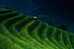 Mù Cang Chải Rice Terrace, Vietnam. Mù Cang Chải Rice Terrace has been recognized as one of the unique landscapes of Vietnam. The Hmong people royalty free stock photos