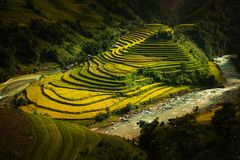 Mù Cang Chải Rice Terrace, Vietnam. Mù Cang Chải Rice Terrace has been recognized as one of the unique landscapes of Vietnam. The Hmong people stock image