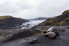 MÃ-½ rdalsjökull Gletscher, Island Stockfoto