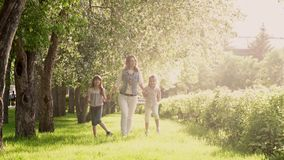 A mãe anda com suas filhas ao longo da avenida de árvores de maçã A menina está guardando sua mãe pela mão video estoque