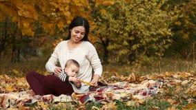 Mãe com o filho no parque do outono video estoque